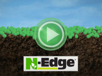 n-edgevideo